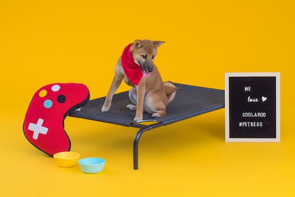 CPETBEDL,orthopädisches Hundebett - Hundebett