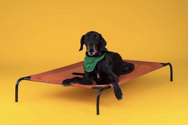 CPETBEDL, Hundeliege - Hundebett
